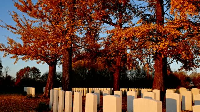 vidéos et rushes de automne fond dans un cimetière de guerre: des feuilles dorées qui tombent sous le ciel bleu et la lumière du coucher du soleil - première guerre mondiale