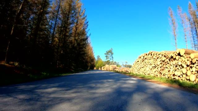 Autumn car drive in rural landscape devastated by bark beatle