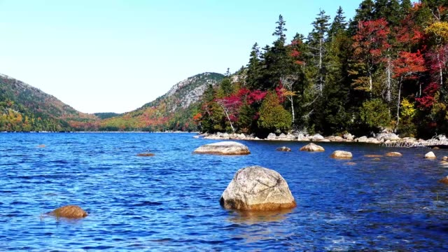 Autumn colors from nature in Acadia video