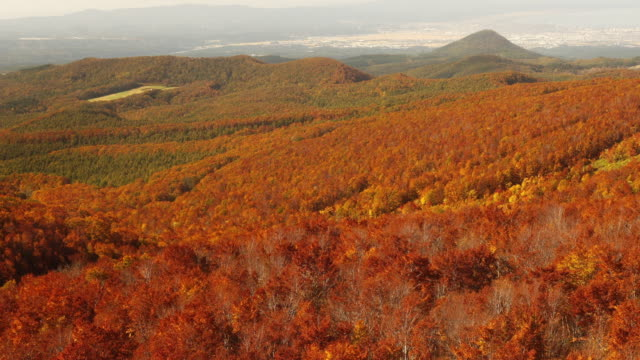八甲田山や青森県、頂上に乗ってケーブルカーの秋カラーは。 - 秋点の映像素材/bロール