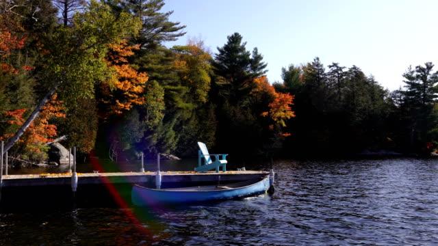 autumn colours at the lake - riva dell'acqua video stock e b–roll