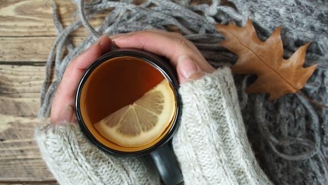 concetto autunnale casa accogliente. le mani delle donne in maglione caldo caldo in una tazza di tè caldo. - bevanda calda video stock e b–roll