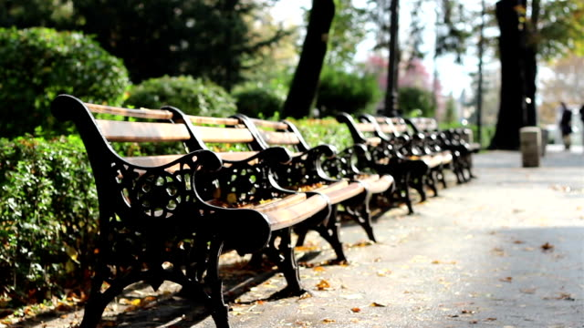 Autumn Desolated Benches video