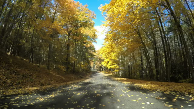 Autumn drive in Central Massachusetts video