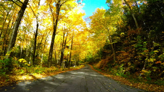 Autumn drive in the White Mountains of New Hampshire video