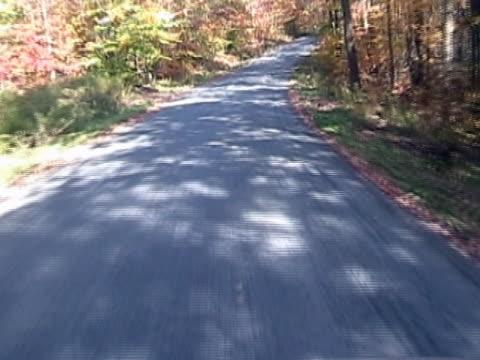 Autumn Drive video