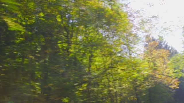 hösten körning - körning på en bergsväg på en vacker höstdag. pov skott från fönstret sida på en bil, handhållen kamera - fordon på land bildbanksvideor och videomaterial från bakom kulisserna
