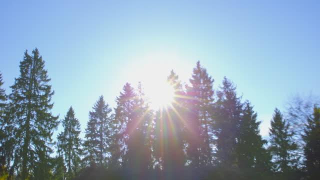 hösten körning - körning på en bergsväg på en vacker höstdag. pov skott från fönstret sida av en bil, sekvens, handhållen kamera - fordon på land bildbanksvideor och videomaterial från bakom kulisserna