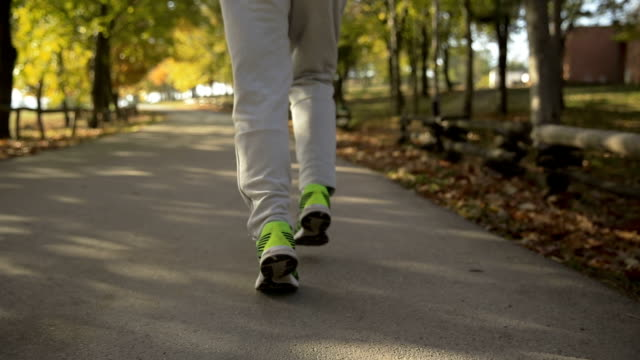 autumn exercise - active lifestyle stock videos & royalty-free footage