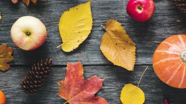 Autumn flat lay of colorful leaves, pumpkin, apples