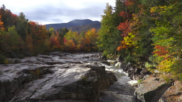 autumn foliage in the white mountains of new hampshire - rivulet 4k stock videos and b-roll footage