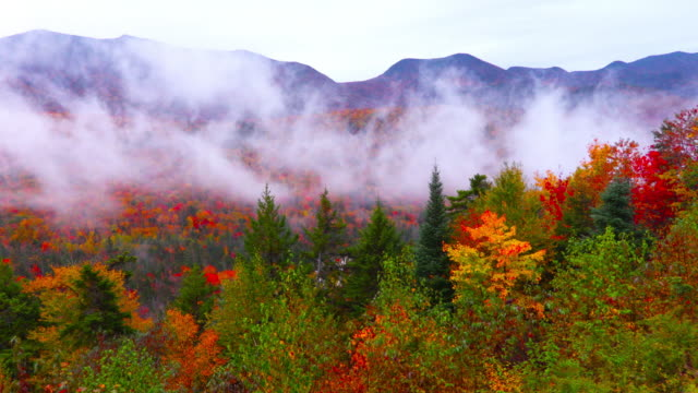 Autumn Foliage in the White Mountains of New Hampshire video
