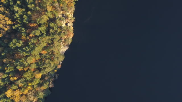 hösten skogen flygfoto - swedish nature bildbanksvideor och videomaterial från bakom kulisserna