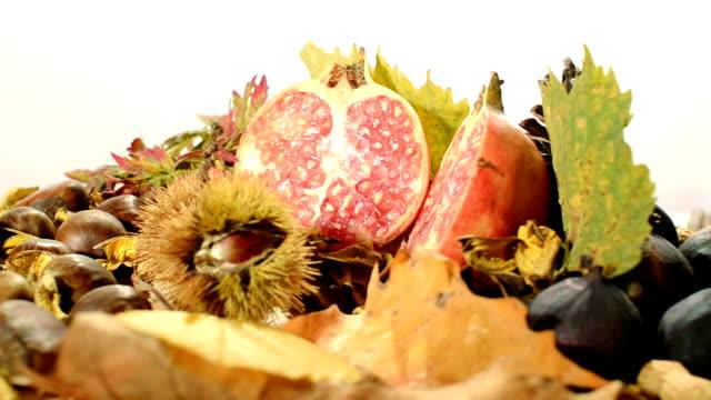 autumn fruits video
