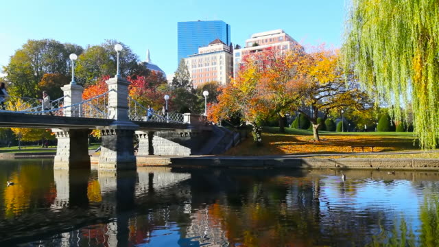 Autumn in Boston video