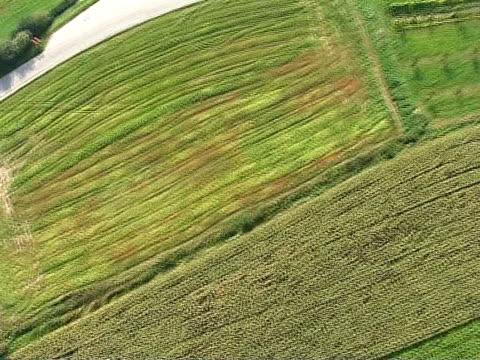 autumn in nature from air - i̇badet yeri stok videoları ve detay görüntü çekimi
