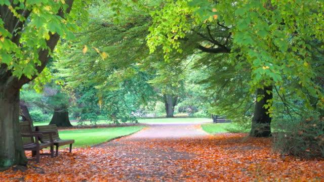 Autumn Landscape in Royal Botanic Garden in Edinburgh