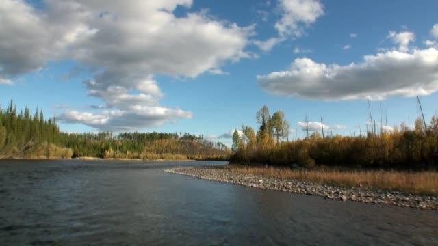 stockvideo's en b-roll-footage met het landschap van de herfst van de rivier van lena in uninhabited taiga van siberië rusland. - duurzaam toerisme