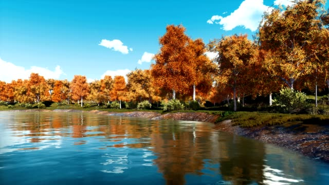 vídeos de stock e filmes b-roll de autumn landscape with scenic fall trees and calm forest lake - margem do rio