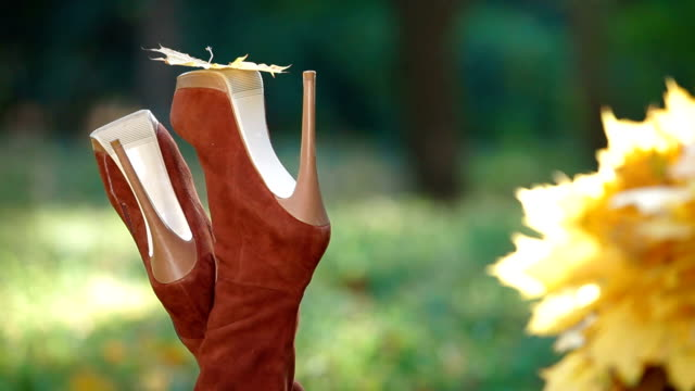 Autumn Leaf On High Heel video