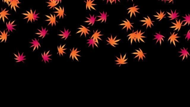 秋天的葉子 - 銀杏樹 個影片檔及 b 捲影像