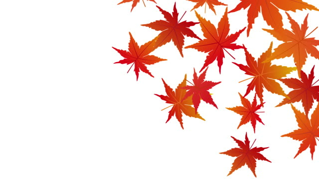 Autumn leaves animation It is an video of a Autumn leaves animation. hovering stock videos & royalty-free footage