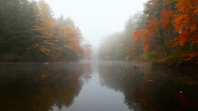 Autumn mist during the peak fall foliage season video