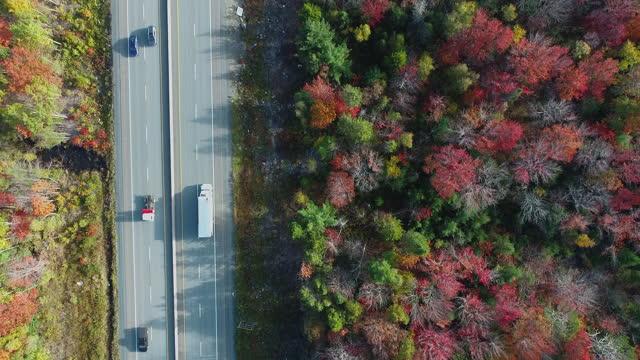 vídeos de stock e filmes b-roll de autumn morning commute - passagem de ano