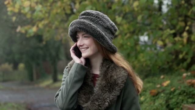 autumn phonecall リチウム cm - 懇親会点の映像素材/bロール