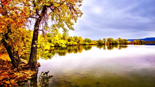 autunno laghetto. - riva del fiume video stock e b–roll