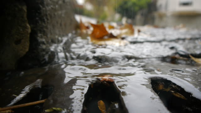 Autumn Rain - Sewer stream. video