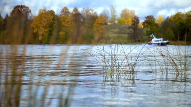 Autumn river beauty. video