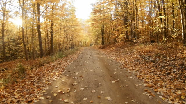 Autumn road in the White Mountains of New Hampshire