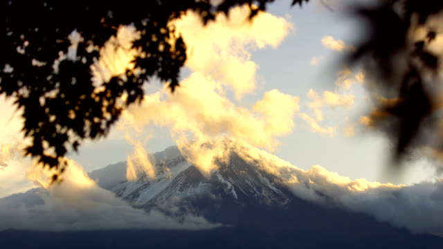 autumn season and mountain fuji with red leaves maple at lake kawaguchiko - ноябрь стоковые видео и кадры b-roll