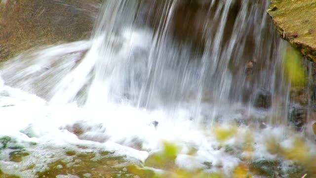 Autumn stream. HD. video