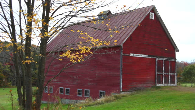 Autumn Autumn in rural Vermont barns stock videos & royalty-free footage