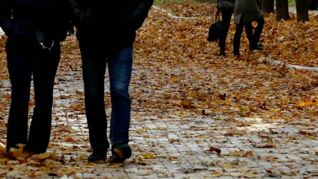 park ve insanların ayaklarını sonbahar sarı yapraklar - uzun adımlarla yürümek stok videoları ve detay görüntü çekimi