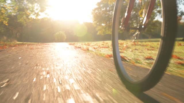 Autumnal Bike Trail Ride at Sunrise video