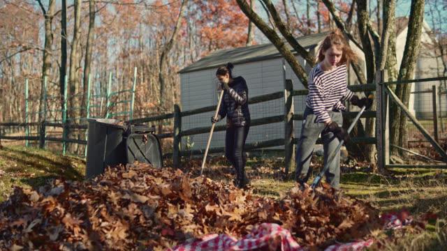 stockvideo's en b-roll-footage met autumn's opruimen op de achtertuin. twee zussen, tiener meisjes, harken van gevallen bladeren samen voor verwijdering. - teenager animal