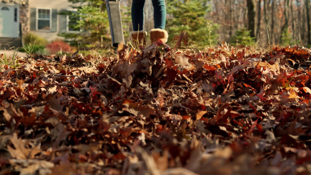 Autumn's cleanup. Teenager girl removing fallen leaves with leaf blower