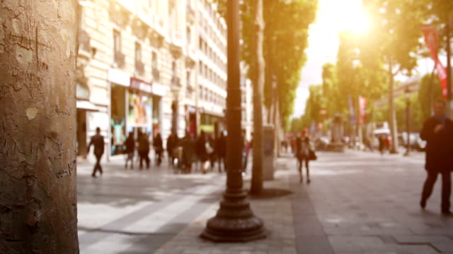 Avenue des Champs Elysees video