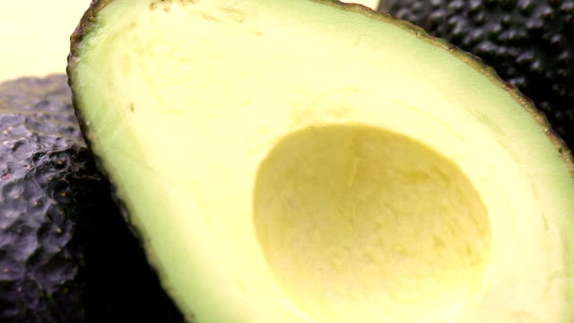 vídeos de stock e filmes b-roll de abacate - abacate