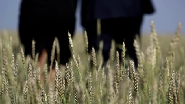 Away in the fields video