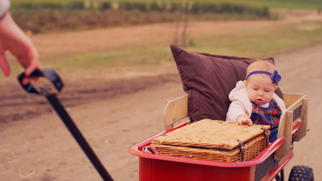 A baby being pulled in a wagon at a pumpkin patch on a fall day