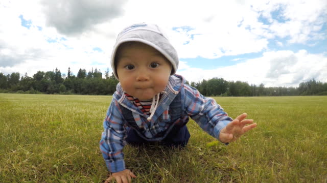 Baby boy is crawling on the field video