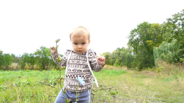 Baby boy is making his first steps in autumn  day in park outdoors. video