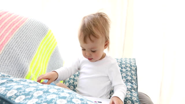 baby boy sitting and reading a book - parola video stock e b–roll