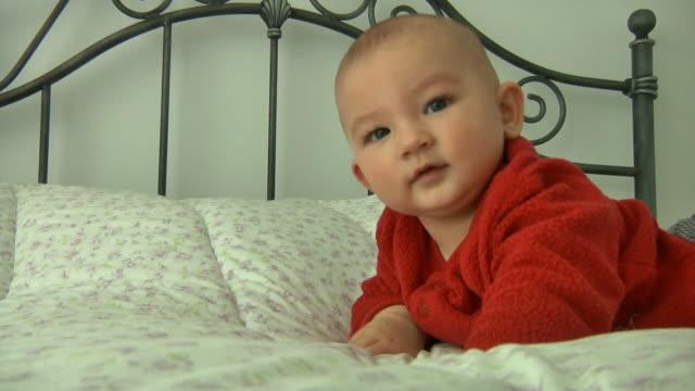neonato bambino - solo neonati maschi video stock e b–roll