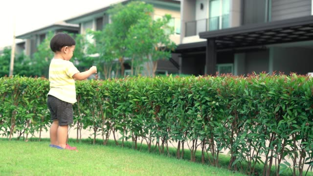 baby boy walking in garden video