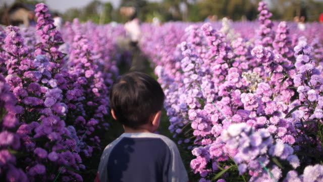 Baby boy walking in the field of purple flower